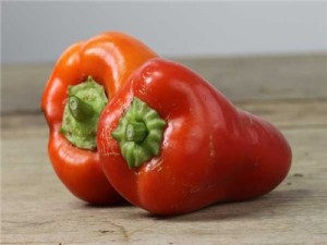 A small pepper, for those of you who want something sweet but maybe find yourself wasting a lot of peppers. These are also good grown in pots as the plants stay a pretty manageable size.