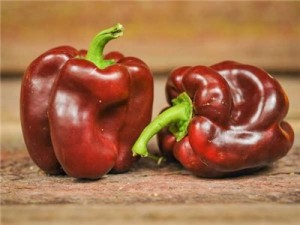 Chocolate? That's the only reason I bought this pepper. That and the red coming off in this photo is supreme. I haven't tasted these yet, But I would bet they'll be one of my favorites this year.